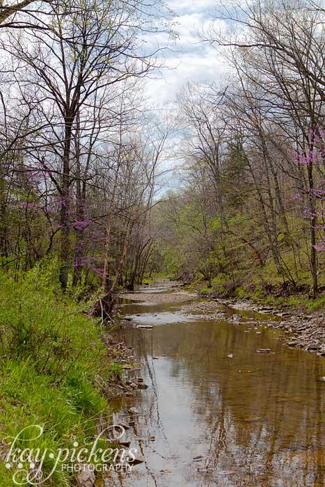 creek in columbia mo