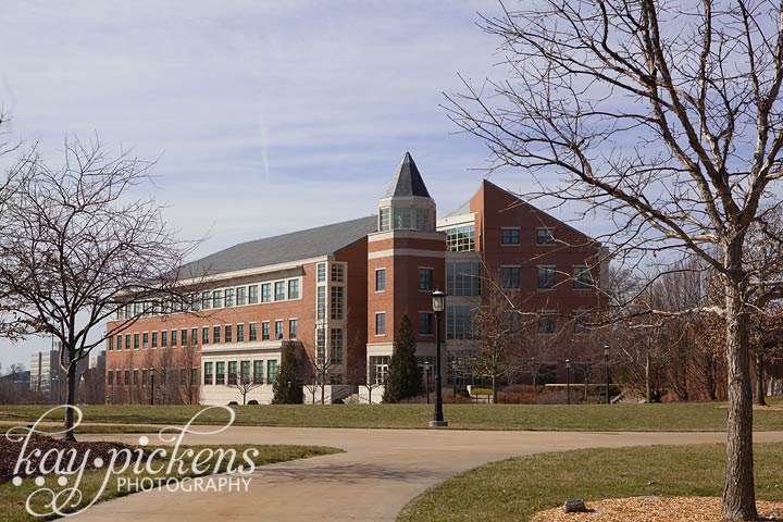 mizzou business school
