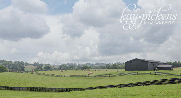 horse farm in lexington Kentucky art for sale
